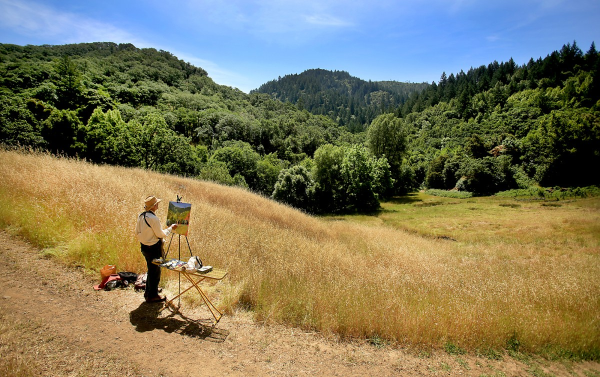 Jim Sullivan of Occidental paints the Mayacamas mountains Thursday June 2, 2016, at the 162-acre Land Trust acquisition that will join Hood Mountain Regional Park and Sugarloaf Ridge State Park. in Santa Rosa. (Kent Porter / Press Democrat) 2016