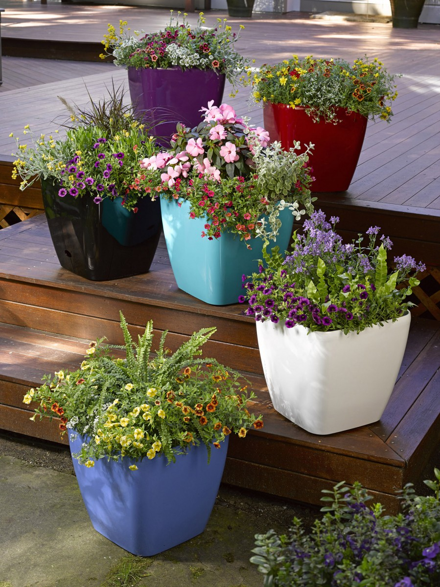 colorful planters