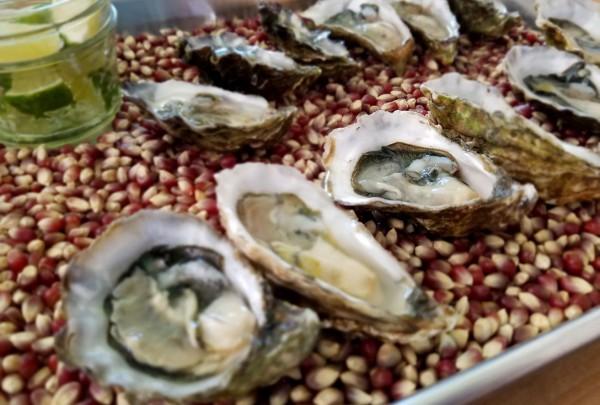 oysters_handline