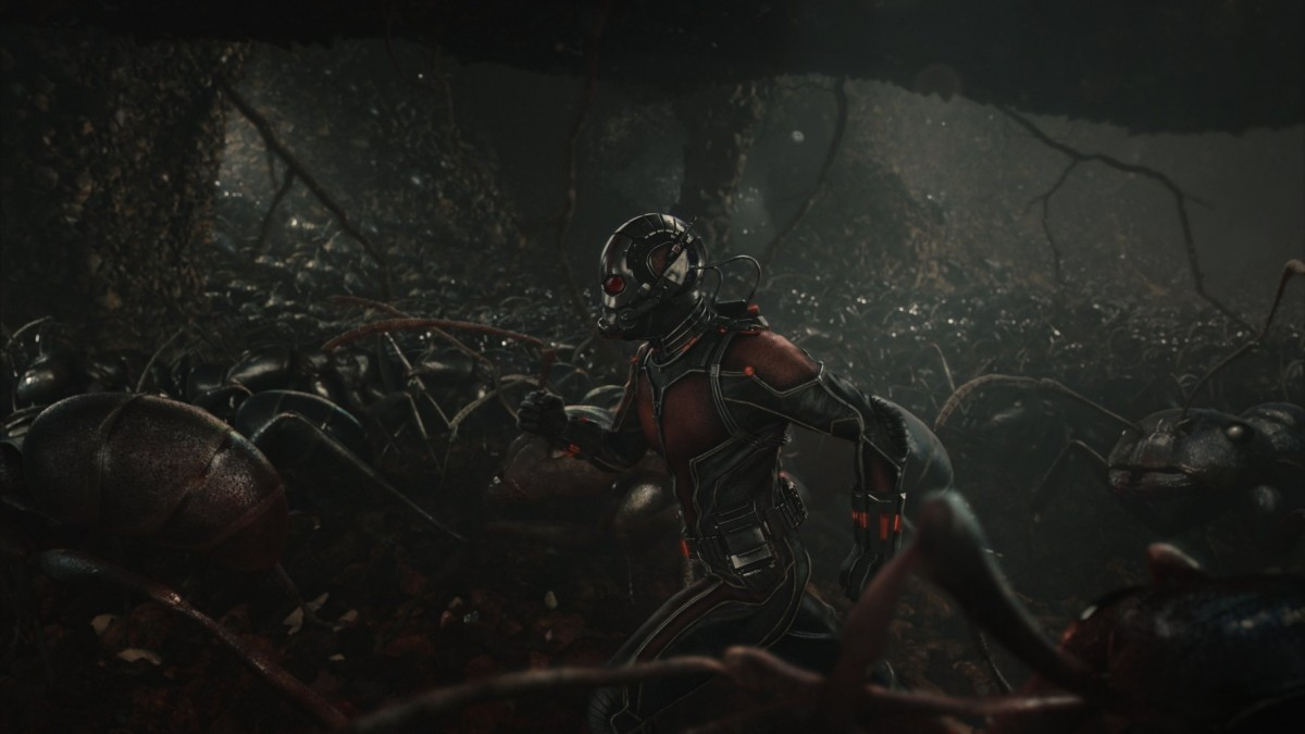 "Paul Rudd in ""Ant Man."" (Photo Courtesy IMDB)"