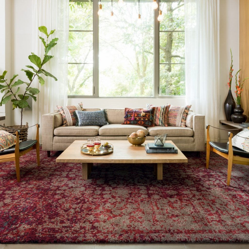 Transform Any Room in Your House with an Area Rug | Sonoma ...