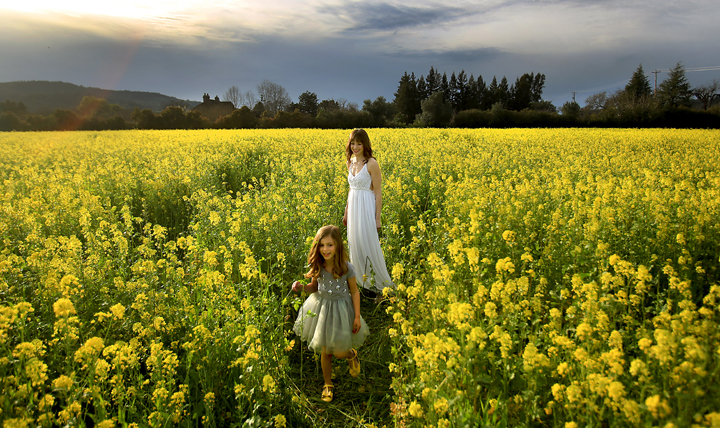 Lille Smallcomb, 5. and her mother Jennie of Santa Rosa take advantage of the warm weather to relax in a mustard field near Kenwood, Monday Feb. 29, 2016 as they prepare to model dresses for a commercial photographer. (Kent Porter / Press Democrat) 2016