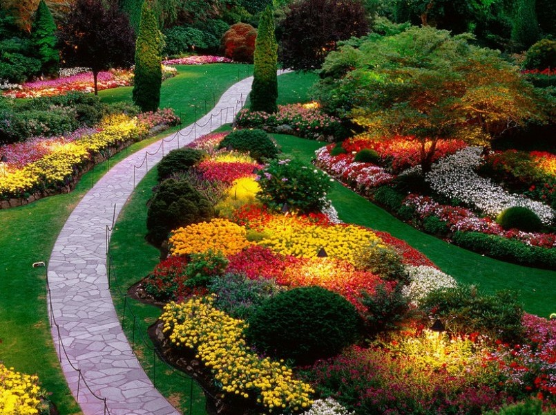 image via landscaping galleries - Perennial Flower Garden Ideas Pictures