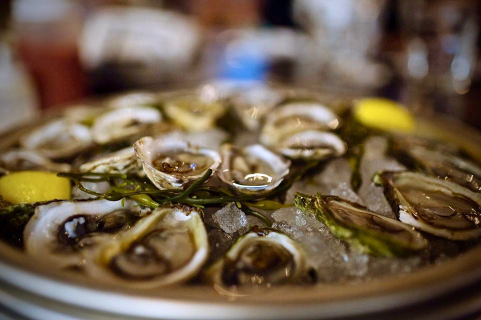 Oysters at The Shuckery in Petaluma. (Photo Courtesy: The Shuckery)
