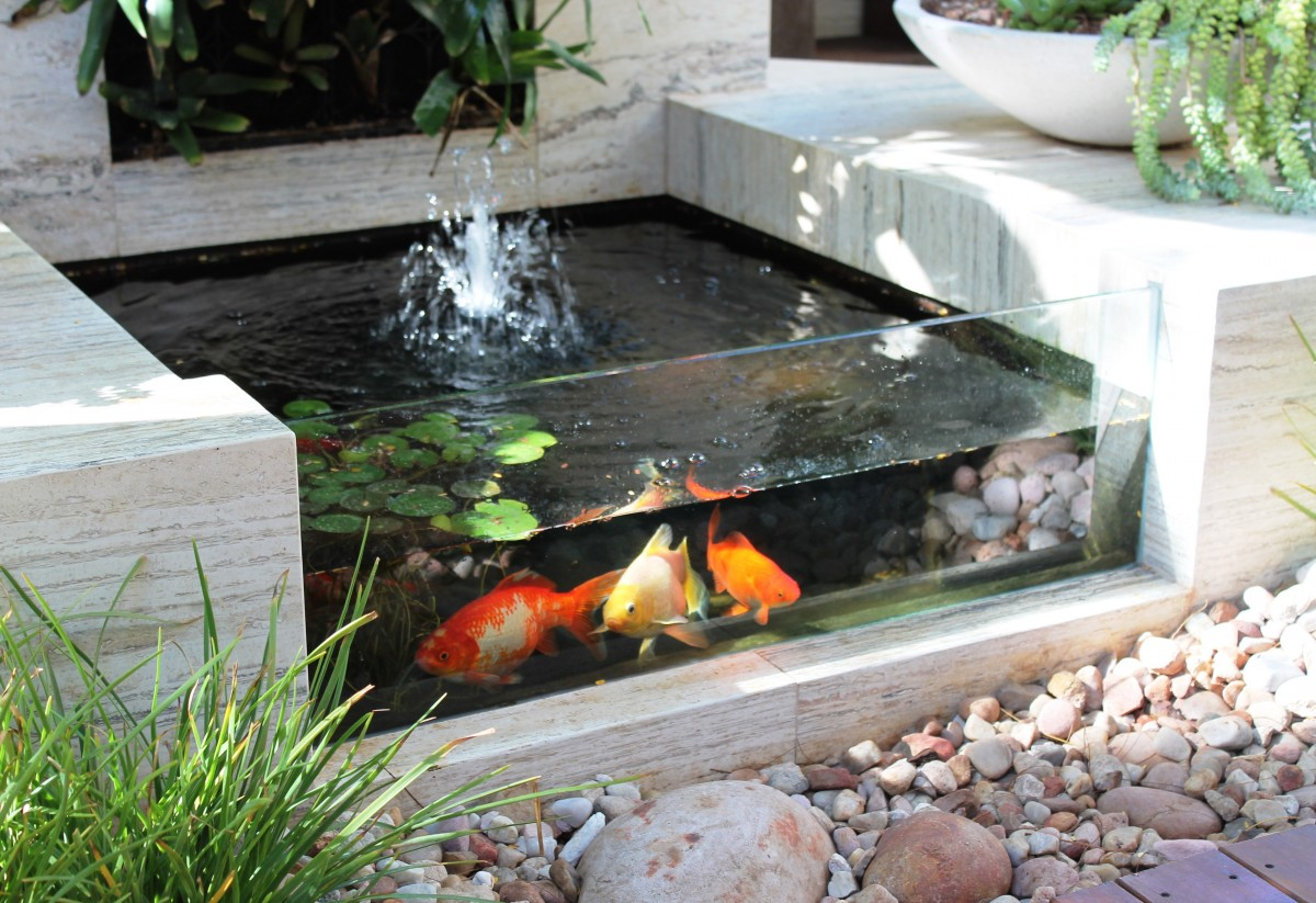 Create a relaxing zen space in your backyard for Koi pond fish