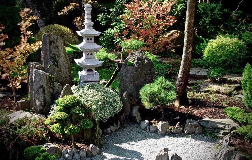 create a relaxing zen space in your backyard
