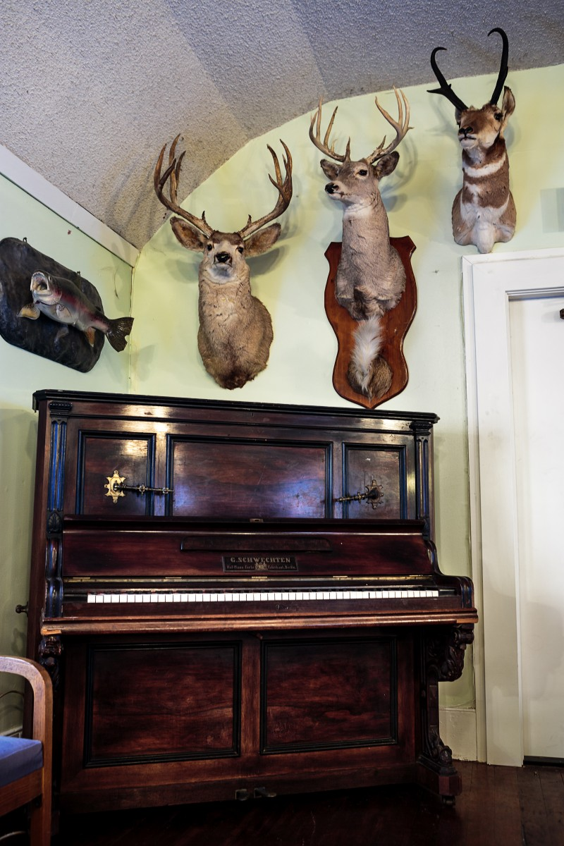 Washoe Roadhouse Piano that has been there since the 1800s with animal heads upstairs where the bordello was. Chris Hardy
