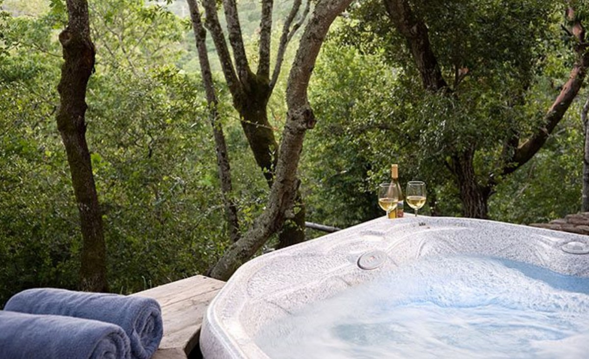 stay in a tree in sonoma county