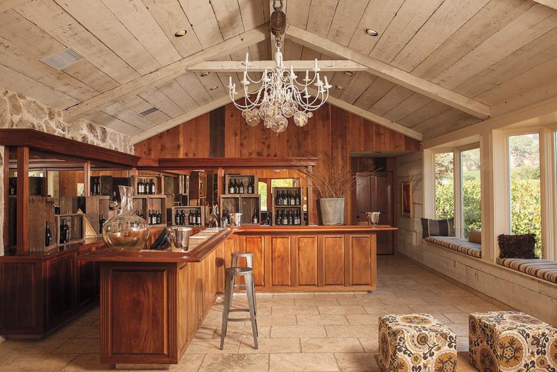 vineyard 4
