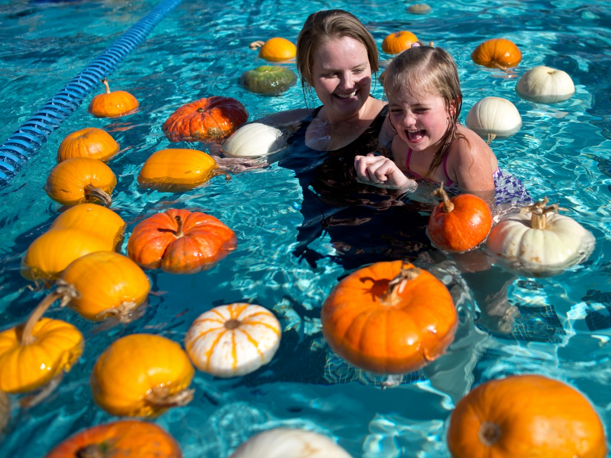 aj1019_FloatingPumpkinPatch_10.jpg More Like This Printer Friendly Download 8378995 bytes; 3900 x 2925; Donata Mikulik, left, and her daughter Viola, 4, swim among the floating pumpkins at Ridgeway Swim C Donata Mikulik, left, and her daughter Viola, 4, swim among the floating pumpkins at Ridgeway Swim Center's annual floating pumpkin patch in Santa Rosa, Calif., on October 19, 2013. (Alvin Jornada / The Press Democrat)