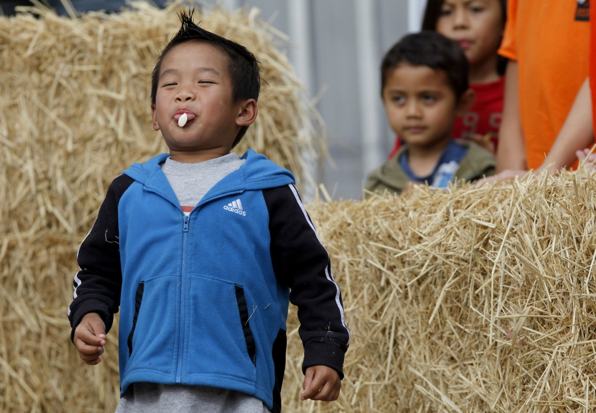 Andre Lam-Truong, 4, has trouble spitting out his pumpkin seed as he competes in a pumpkin seed spitting contest during Fall Festival at Tolay Lake Regional Park east of Petaluma, California, on Sunday, October 16, 2011. (BETH SCHLANKER/ The Press Democrat) Beth Schlanker