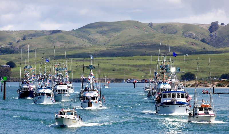 Boats parade by the Fisherman Festival out of Bodega Harbor for the Blessing of the Fleet Sunday, April 27, 2014. (Crista Jeremiason
