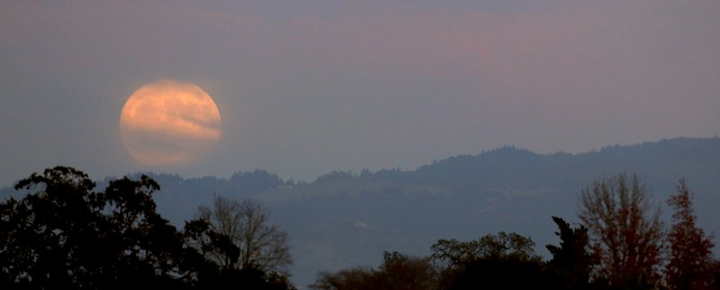 Obscured by clouds, the super moon rises over the Mayacamas Mountains, Sunday Nov. 13, 2016, photographed from Santa Rosa (Kent Porter