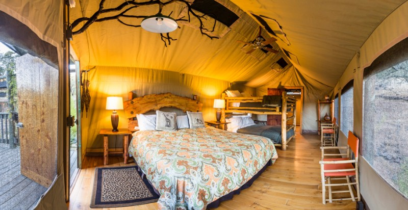 Bed in a luxury tent at Safari West. (Photo courtesy of Safari West)