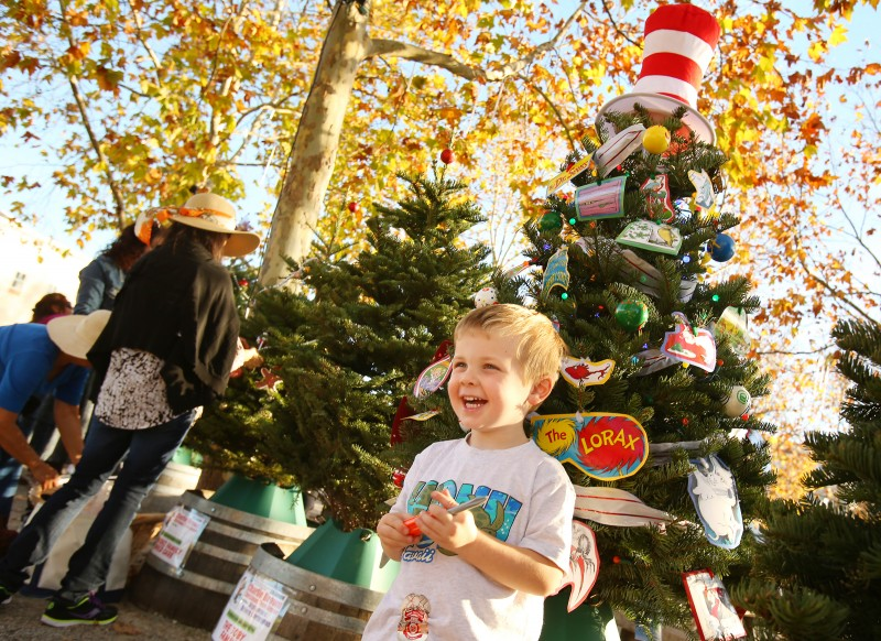 Patrick James, 3, stands with his Dr. Seuss themed tree at the Charlie Brown Christmas Tree Grove in Windsor on Sunday, December 1, 2013. (Conner Jay/The Press Democrat) Charlie Brown Christmas Tree Grove Conner Jay Publication Date: December 2, 2013