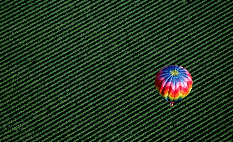 A hot air balloon floats over Windsor vineyards. (Kent Porter)