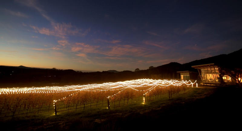 Holiday lights stretch out across the vineyards of Hamel Family Wines in Glen Ellen, Tuesday Dec. 20, 2016. (Kent Porter)