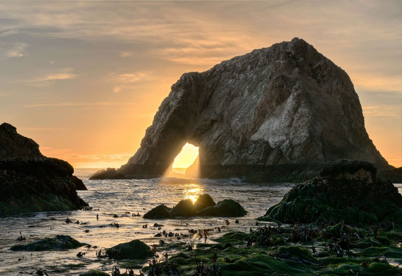 Elephant Rock Sunset, Point Reyes National Seashore. (Photo courtesy of Steven Bratman, Creative Commons)