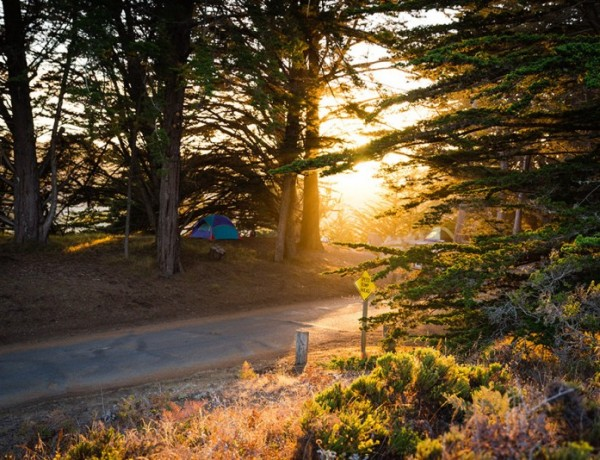 Tent campsite. (Photo courtesy of parks.ca.gov)