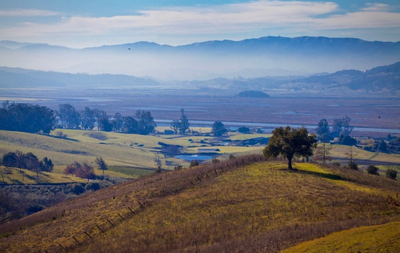 For the winter season, Tolay Lake Regional Park is open to members only. (Photos by Robbi PengellyTolay Lake Regional Park, located between the Petaluma River and the Sonoma Valley. (Photo by Robbi Pengelly)