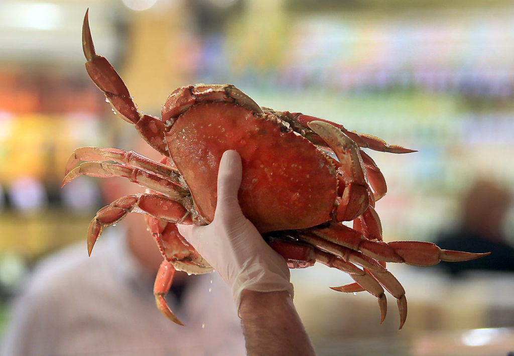 Favorite Sonoma Dungeness Crab Dishes and Recipes 925d02f3d2
