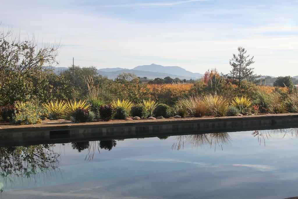 Poolside view at Villa Cabina.