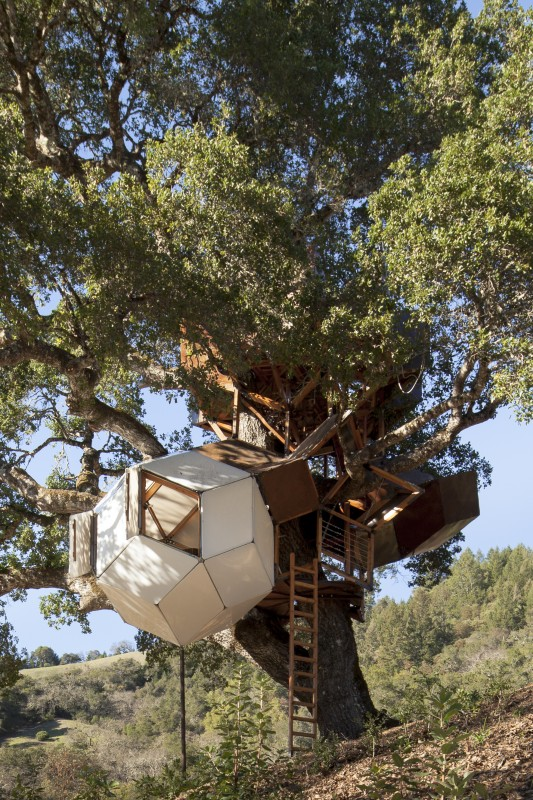 Dustin Feider's treehouse in Healdsburg. (Photo courtesy