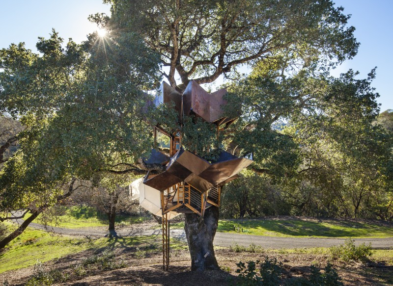 Dustin Feider's Healdsburg treehouse. (Photo courtesy O2 Treehouse)