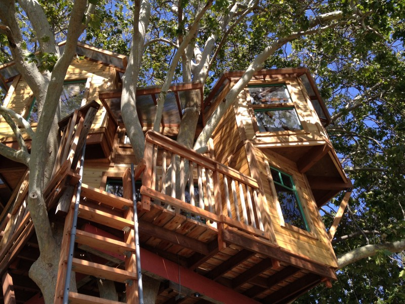 A mostly prefabricated treehouse in San Jose.
