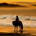 Take a sunset horseback ride on Doran Beach in Bodega Bay. (John Burgess)