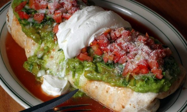 15 Best Burritos In Sonoma County