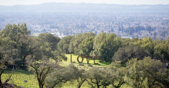 The Love sculpture in the hills near Paradise Ridge Winery, in Santa Rosa, Calif Tuesday, February 14, 2017. (Jeremy Portje / For The Press Democrat)