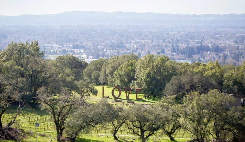 The 4 Best Things to Do in Santa Rosa According to ABC News