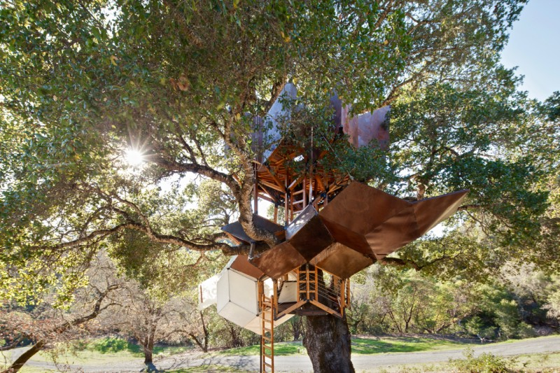Calling All Treehouse Lovers: There's a New Way to Get High in Sonoma County