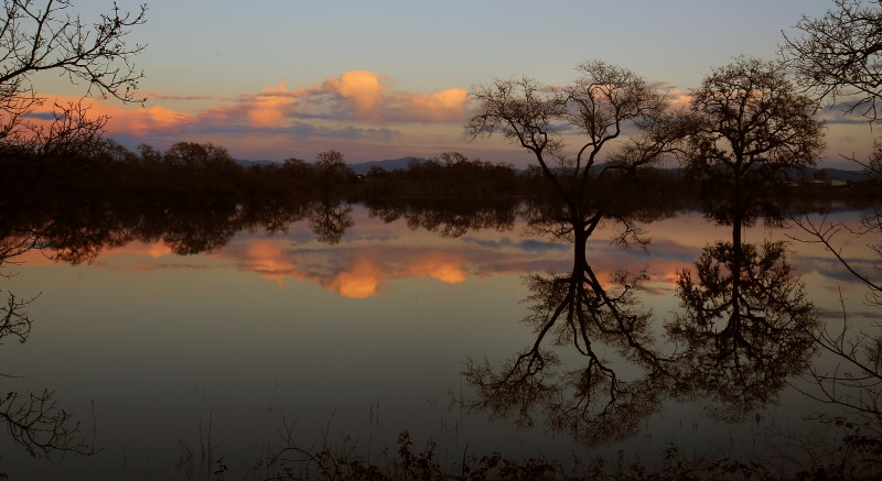 Laguna de Santa Rosa. (Kent Porter)