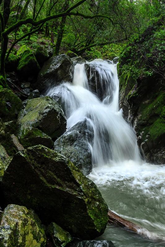 Sonoma Creek Falls. (Chris Hardy)