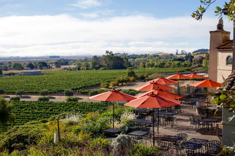 The Vista Terrace At Gloria Ferrer Caves Vineyards In Sonoma Paige Green