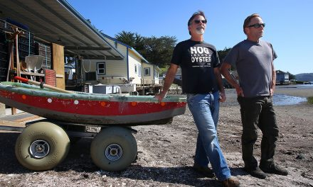 Shell Yeah! Hog Island Oysters Expanding