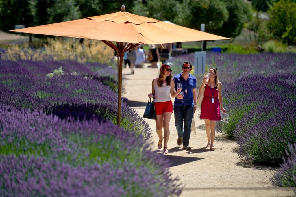 12 Sonoma Garden Events for Green Thumbs, July - Sept