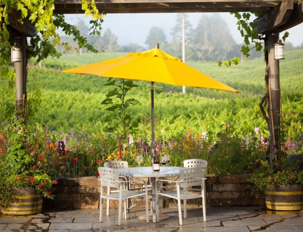5 West County Wineries To Visit Right Now