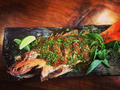 Thai Like You've Never Tasted at Sebastopol Pop-Up
