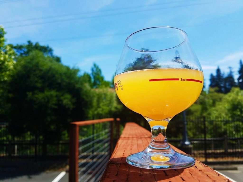 7 New Sonoma Breweries & Taprooms to Check Out This Summer