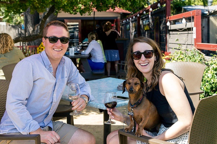 17 Best Dog-Friendly Wineries in Sonoma County