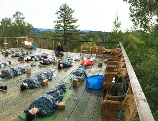 yogi deacon