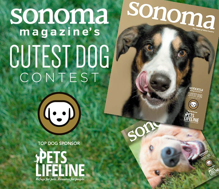 Enter Sonoma Magazine's Cutest Dog Contest