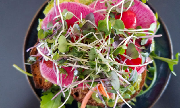 Biteclub's Best Sonoma County Restaurant Meals of 2017