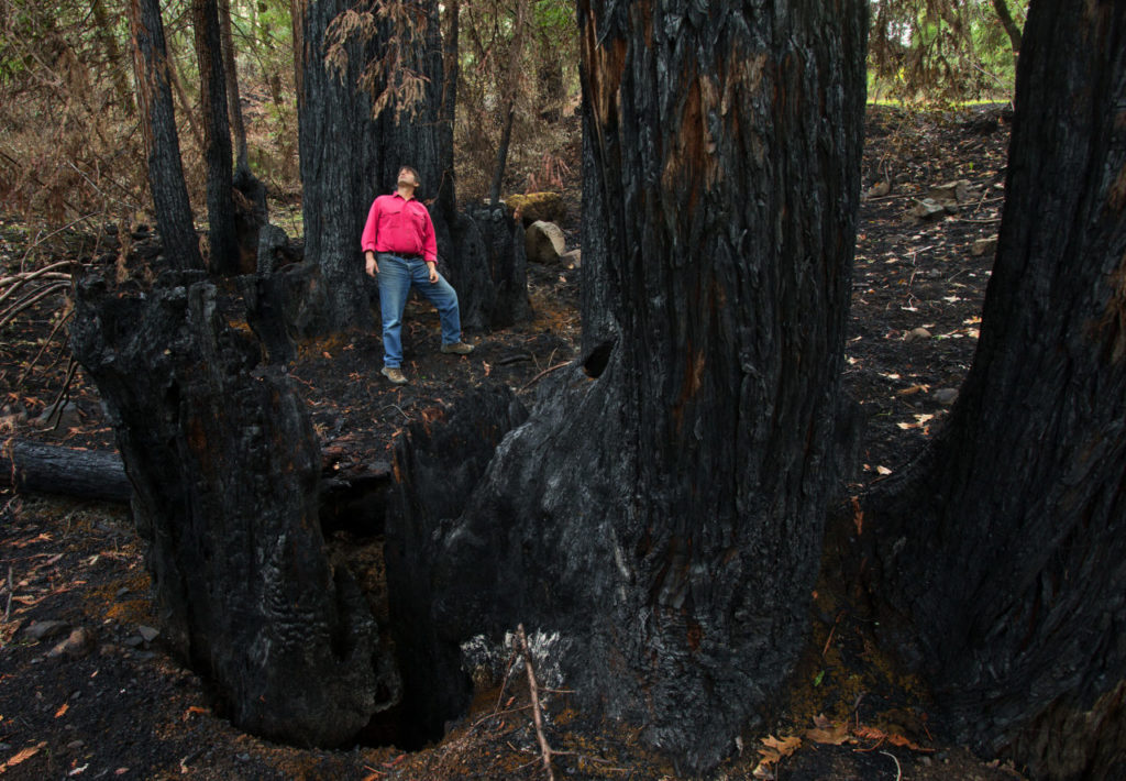 Guided February Hike Offers Glimpse at Nature's Renewal after Fires