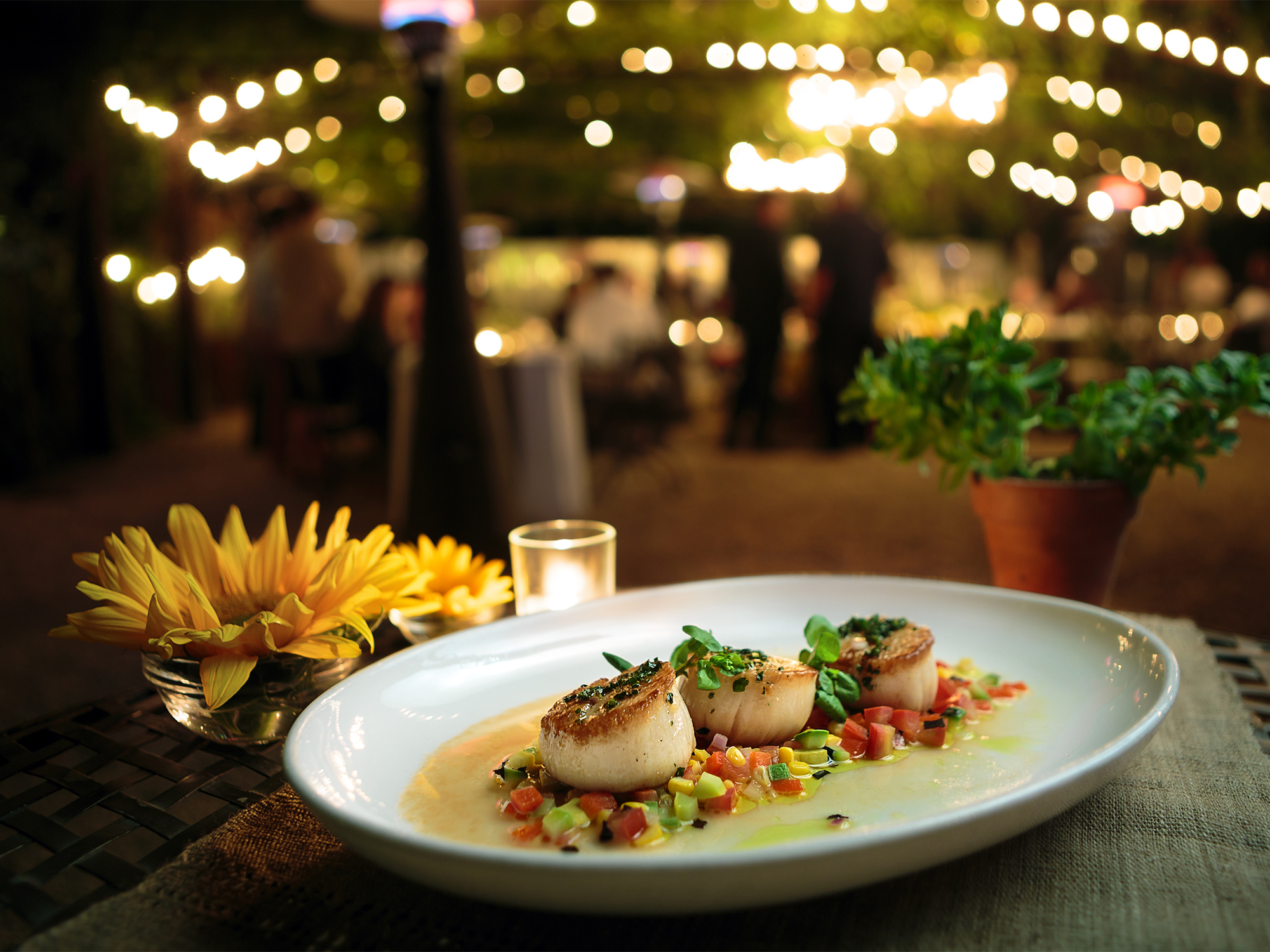 Day boat scallops with summer squash and tomato confit Wedding at Barndiva