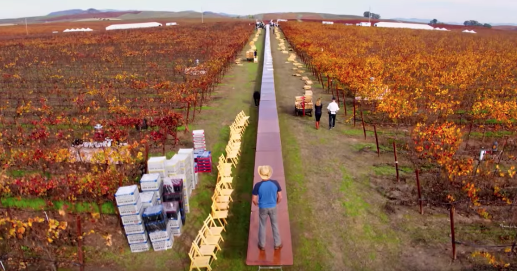 'Uncrushable' is Painful to Watch, But A Heartfelt Love Letter to Wine Country