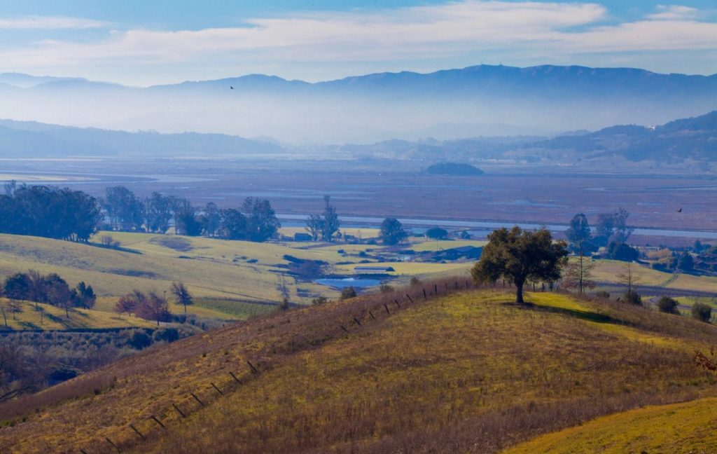 Beat the Winter Blues With These Outdoor Events in Sonoma County